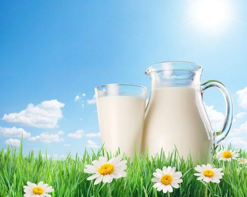 milk77